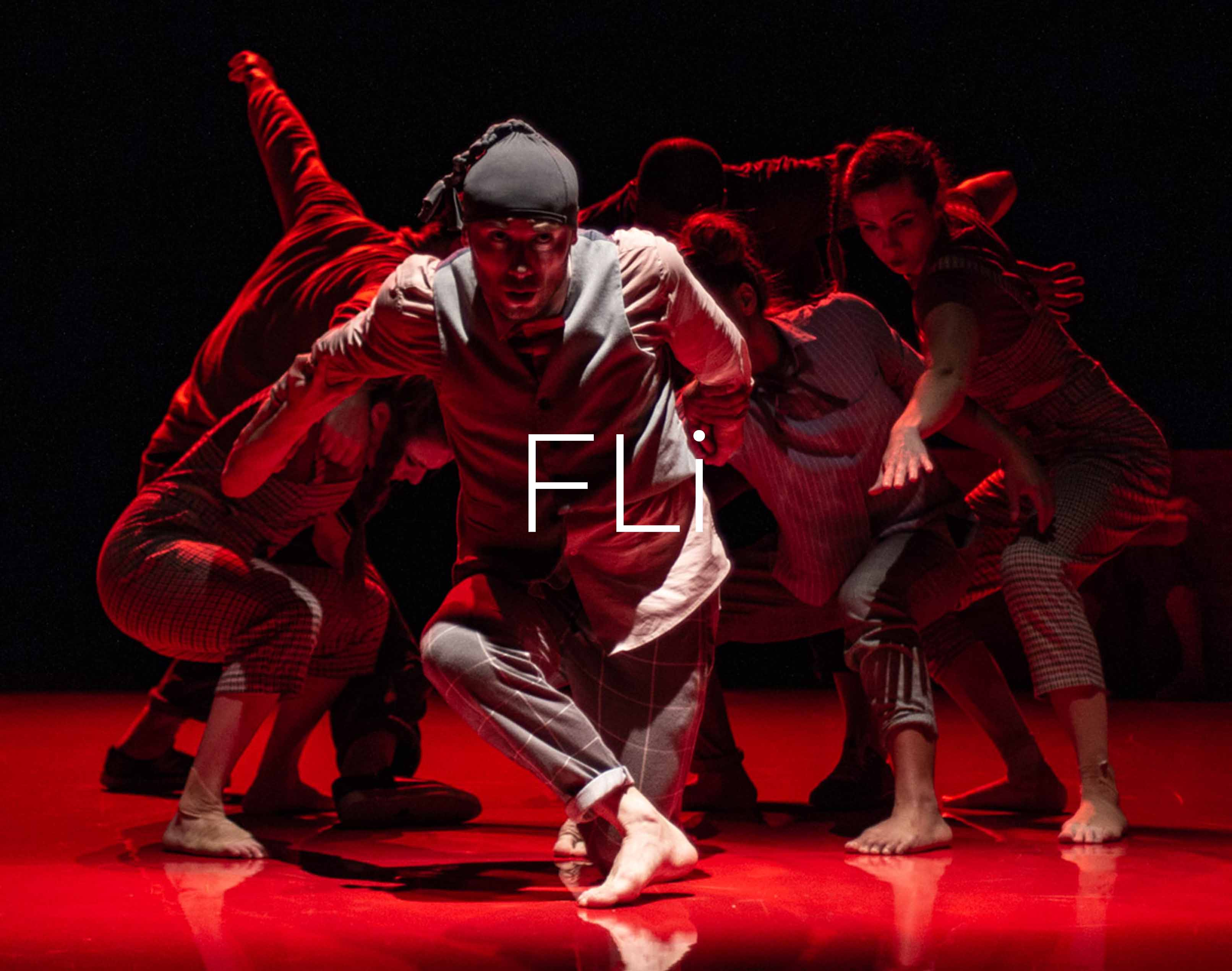 Fli-cover